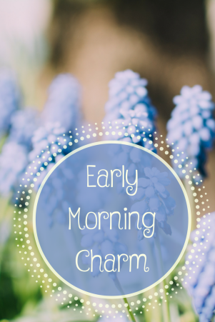 Early Morning Charm
