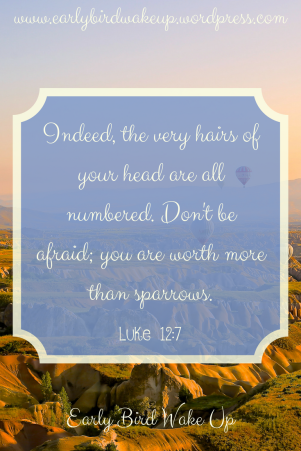 Indeed, the very hairs of your head are all numbered. Don't be afraid; you are worth more than sparrows.