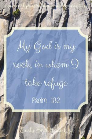 My God is my rock, in whom I take refuge