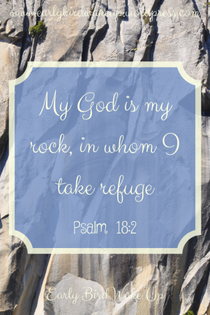 My God is my rock, in whom I take refuge